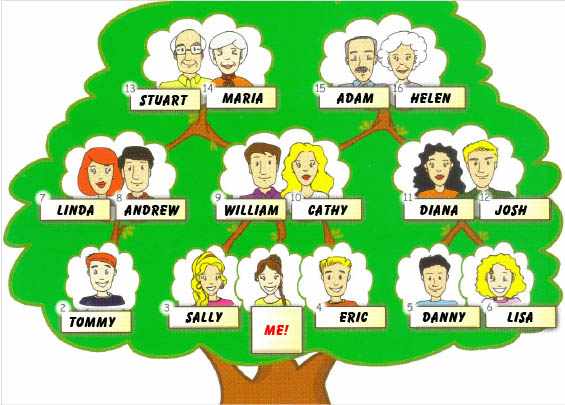 my family structure These are their family dynamics they are influenced by things like the structure of the family - the numbers of children and adults and how they are related.